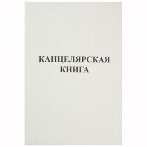 Книга учета бухгалтерская офсет А4 48 листов в линейку на скрепке