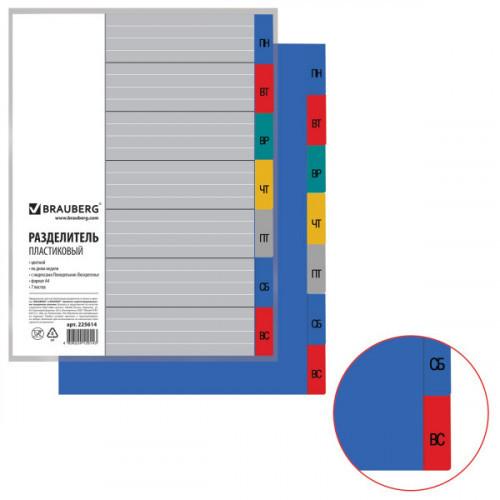 Разделитель пластиковый BRAUBERG по дням недели Понедельник - Воскресенье цветной А4