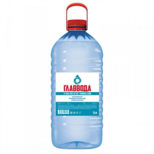 Вода питьевая Главвода негазированная 5 литров 4 штуки в упаковке