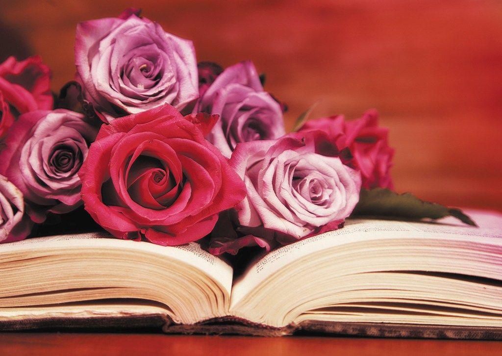 розы для писателя открытка признак альвеолита